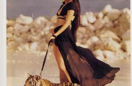 ny-time_-lion_