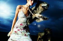 roberta-scarapa-wolf01